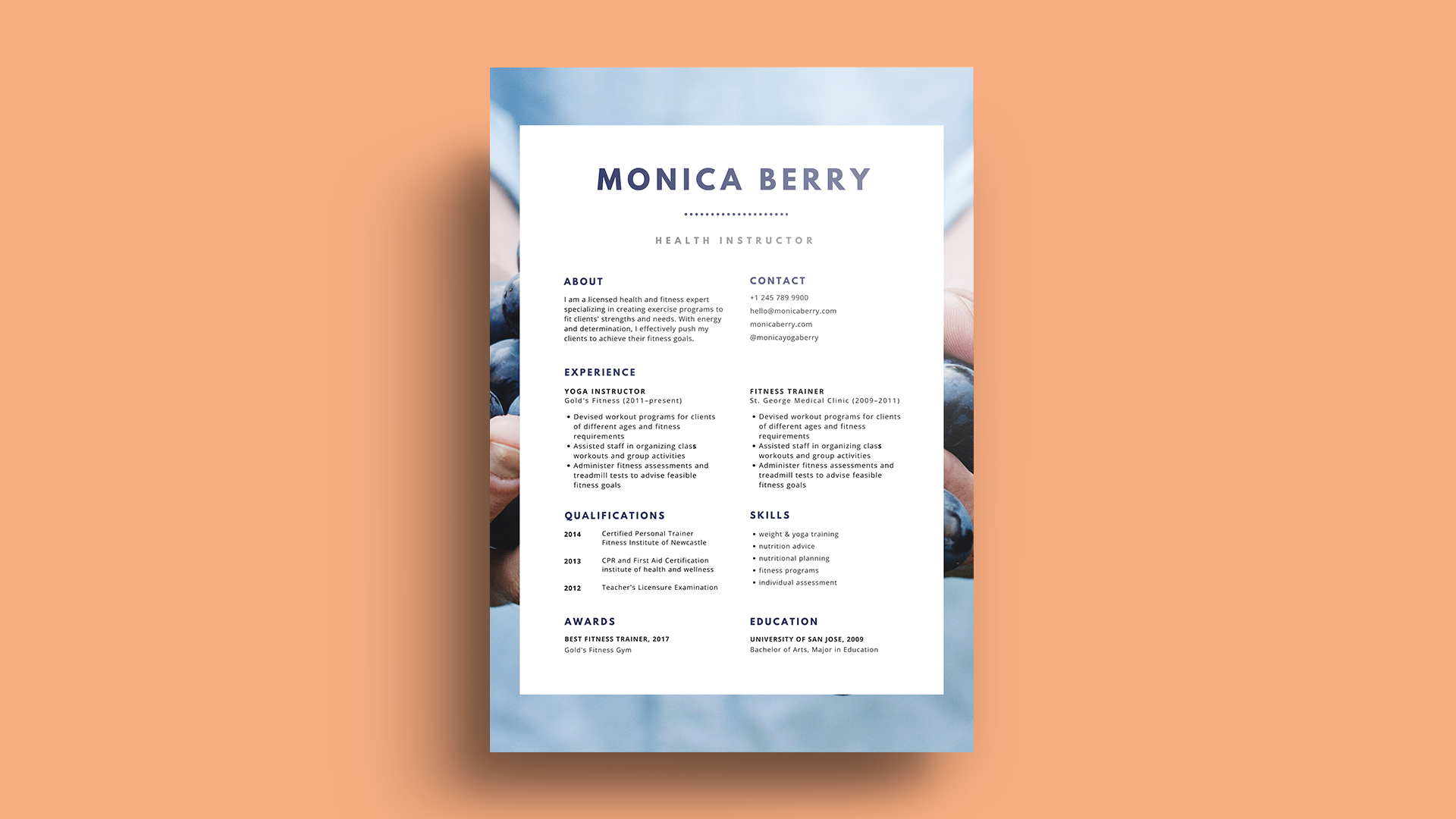 most professional cv font