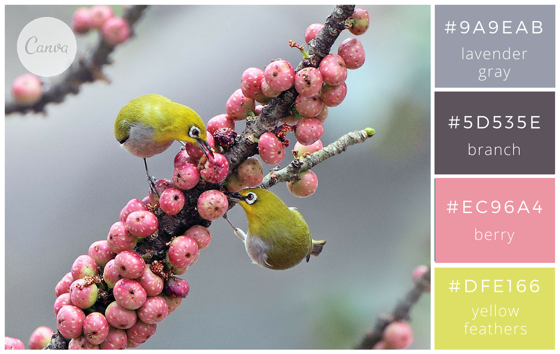 100 brilliant color combinations and how to apply them to your