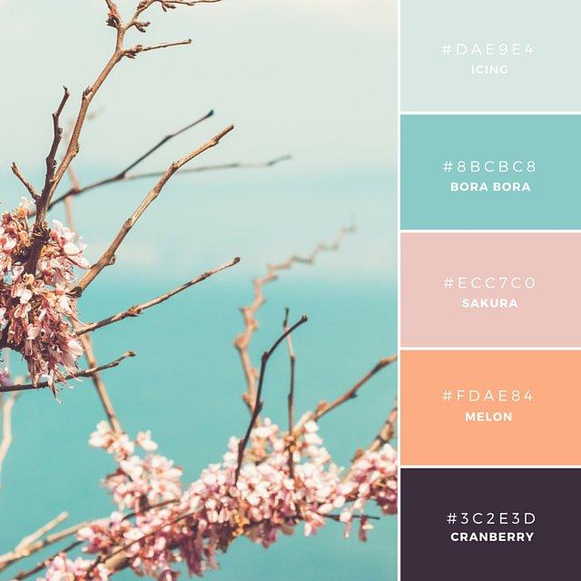 Color Combinations - Insta (6)